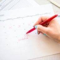 Kdy budete ovulovat? Vypočítejte si ovulaci díky ovulačnímu kalendáři